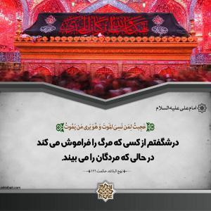امام علی (ع) :در شگفتم از کسی که  مرگ را ...