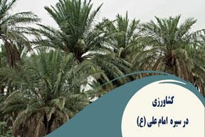 کشاورزی در سیره  امام علی (ع)