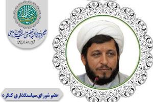 حجت الاسلام و المسلمین عمادی عضو کمیته علمی کنگره